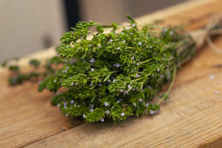 Thyme Bush young juicy fresh Breckland wild thyme with lilac flowers and green leaves on a wooden table close-up. Blurred background environment
