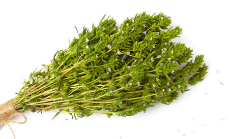 bunch of thyme twigs isolated on white background.
