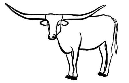 Texas Longhorn bull, cattle icon, on white background. Vector illustrations.