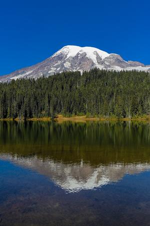 mount rainier: Mount Rainier and reflection lake Stock Photo