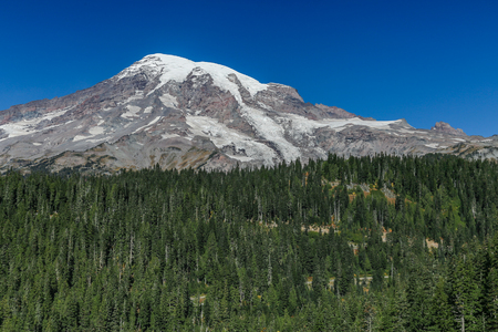 mount rainier: Mount Rainier with trees in the foreground Stock Photo
