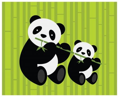panda bear: Two pandas  Vector illustration