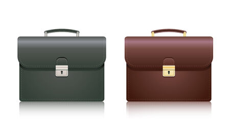 business briefcase: Briefcase