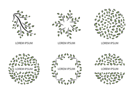 Green leaves. Vector set of logo design templates and emblems. Floral ornament. Vector illustration.