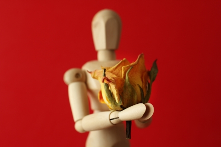 wooden mannequin: Wooden man with rose Stock Photo