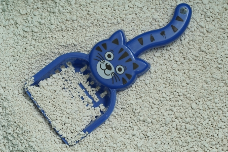 Cat litter with scoop photo