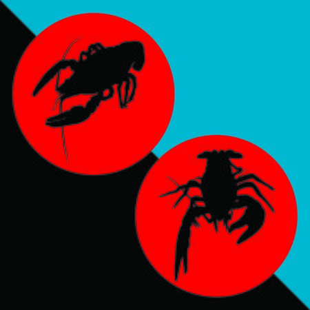 river cancer silhouette The emblem. Silhouette of crustaceans crawfish silhouette, crayfish icon, lobster sign, crawfish symbol Vector