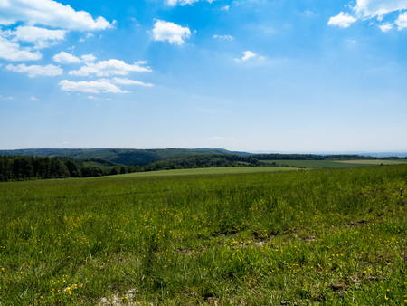 Meadow on a sunny summer day, Czech republic, Moravia Stock Photo