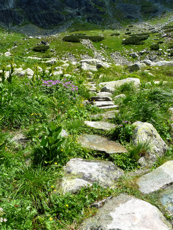 Mountain trail in High Tatras mountains in Slovakia on a sunny summer day. Stock Photo