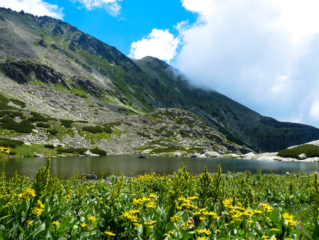 Lovely lake Pleso nad Skokom, High Tatras mountains in Slovakia on a sunny summer day with blooming flowers. Stock Photo