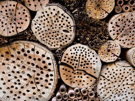 昆虫のさまざまな種類の木製昆虫ホテル。 写真素材