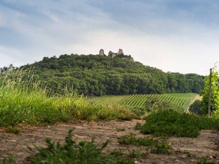 Orphan Castle - romantic ruin in Palava and vineyard, Czech republic, hiking holiday Archivio Fotografico