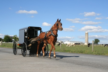 amish buggy: An Amish carriage in Lancaster County,Pennsylvania. Stock Photo