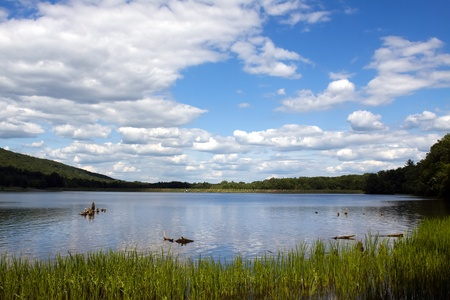 Locust Lake State Park in Schuylkill County,Pennsylvania,USA. Stock Photo - 10073441