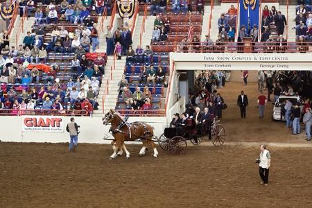 draft horse: PA Governor Corbett rides into farm show arena Editorial