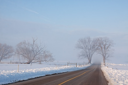 An empty rural road on a foggy winter morning