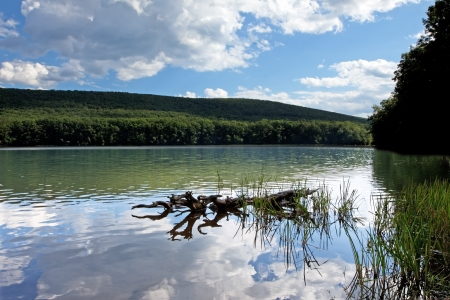 Reflections on water at Locust Lake State Park,Schuylkill County,Pennsylvania,USA  Stock Photo