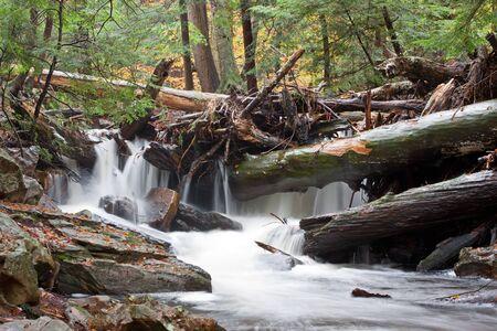 Waterfall at Ricketts Glen State Park,Benton,Pennsylvania,USA