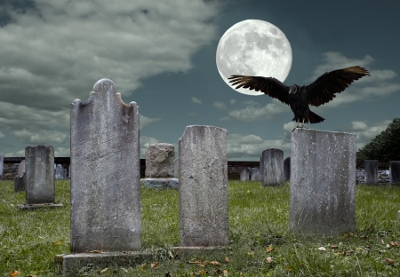 An old graveyard and vulture in the light of the full moon
