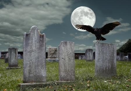 corvo imperiale: Un vecchio cimitero e avvoltoio alla luce della luna piena