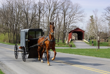 pennsylvania: An Amish horse and carriage travels on a rural road in Lancaster County,Pennsylvania  Stock Photo