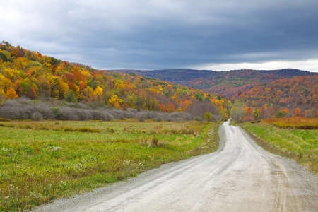 A dirt road winds through the colorful Autumn landscape in Tioga County,Pennsylvania