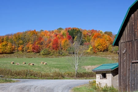 Autumn landscape in rural Tioga County,Pennsylvania  photo