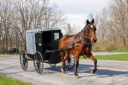 An Amish horse and carriage travels on a rural road in Lancaster County, Pennsylvania, USA
