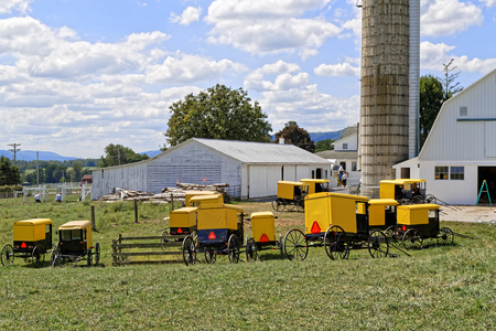 BELLEVILLE PENNSYLVANIA - September 3, 2016: A  group of Amish youth paint all the farm buildings in one day at Mifflin County, Pennsylvania, USA.