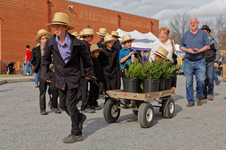 STRASBURG PENNSYLVANIA - February 25, 2017: Amish boys deliver items for buyers at the annual spring auction