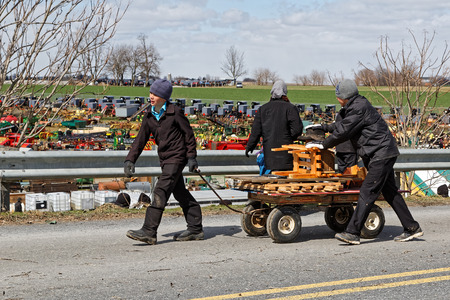 GORDONVILLE PENNSYLVANIA - March 11, 2017: Amish boys deliver items for buyers at the annual spring auction Amish Mud Sale to benefit the Fire Company. Sale items include quilts, antiques, crafts, food, sporting goods, tools, farm equipment and horses. Editorial