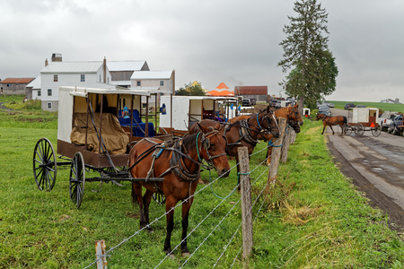 Horses tied to a pasture fence at an annual Amish benefit auction in Mifflin County, Pennsylvania. Sale items include quilts, tools, food, farm machinery and antiques.