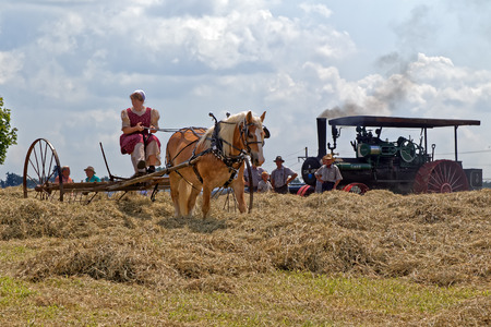 NEW HOLLAND, PENNSYLVANIA - August 4, 2017: A young Mennonite woman rakes hay at Big Spring Farm Days. This is an annual event demonstrating traditional threshing and harvesting methods, using restored antique and vintage tools.