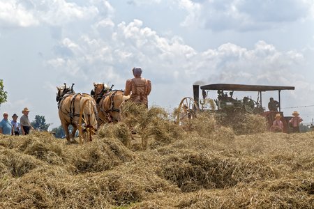 NEW HOLLAND, PENNSYLVANIA - August 4, 2017: A young Mennonite woman operates a hay tedder at Big Spring Farm Days. This is an annual event demonstrating traditional threshing and harvesting methods, using restored antique and vintage tools.