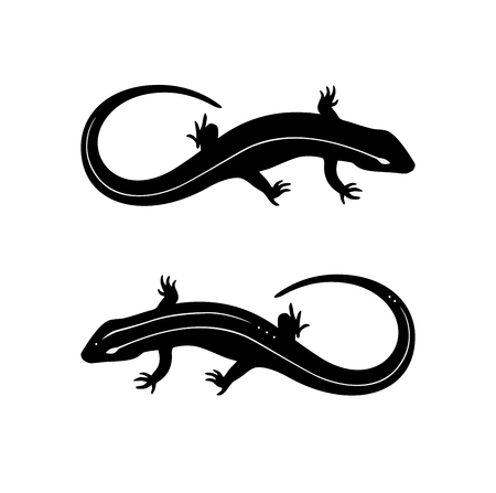 Lizard black and white tattoo illustration vector set