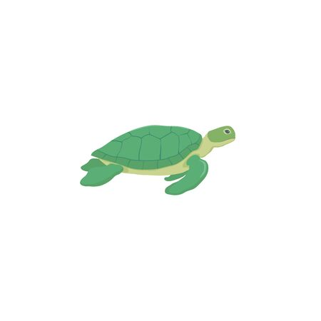 Sea turtle isolated vector illustration colorful
