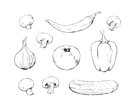 Set of hand drawn vegetables sketches, tomato, cucumber, pepper, onion and mushrooms ink