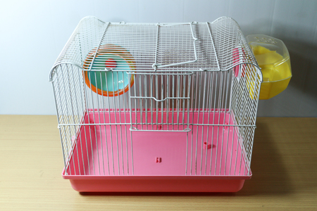 old and empty white and pink hamster cage on wood desk with hamster wheel and yellow hamster toilet