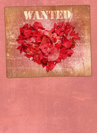 buckaroo: Heart made of petals of roses on a background of a pink wall Stock Photo