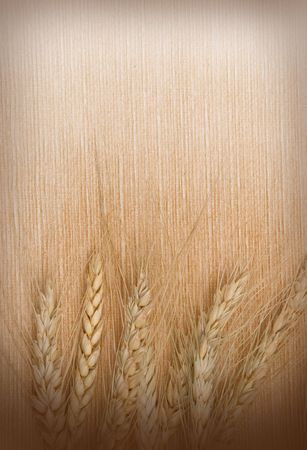 Background from wheat ears on a textile  photo