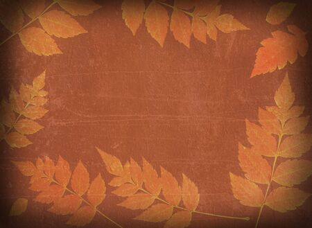 vintage autumn background Stock Photo - 5825516