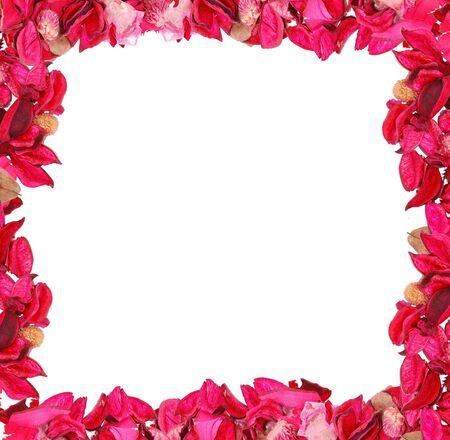 Frame made of pink petals photo