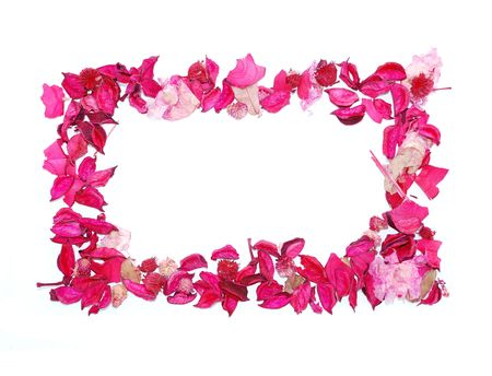 Frame made of pink petals photo