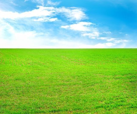 Green field and sky with white clouds Stock Photo - 6911571