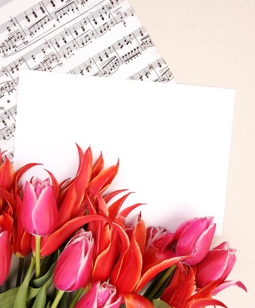 beautiful red tulips with music sheet page and congratulatory blank Stock Photo - 6991150