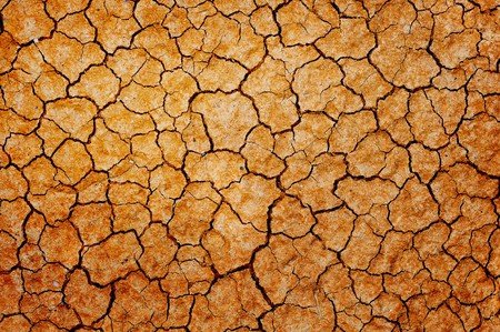 Dry cracked earth background.