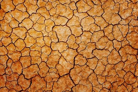 sequ�a: Fondo de tierra seca de fisuras.