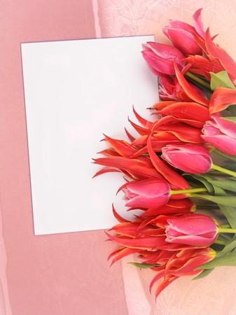congratulatory: beautiful flowers with congratulatory blank on decorative background Stock Photo