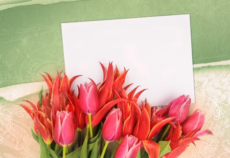 beautiful flowers with congratulatory blank on decorative background Stock Photo - 7246983