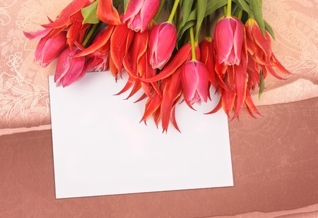 beautiful flowers with congratulatory blank on decorative background Stock Photo - 7309183